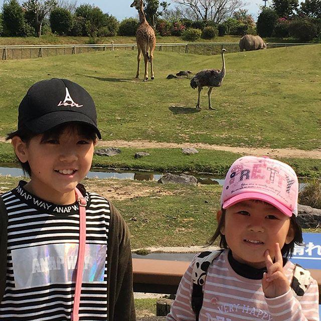 今日は、パパもお休み動物園へ〜🦒 行って来ました〜 大喜びのお2人さん٩(๑❛ᴗ❛๑)۶#鹿児島平川動物園#4月2日#フレンチブルドッグ (Instagram)