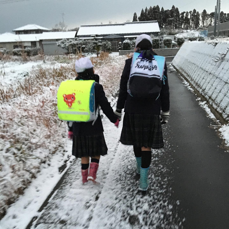 雪雪雪雪☃️️土曜授業で今日は学校〜❣️テンション️️ワンコ達も寒いのかお外へ出たのはお2人だけ最年長12才のペコちゃん手が震えてたのかブレブレそしていつもの定置におしっこ中のジュニアごめーんジュニ❣️おしっこ中じゃないと撮れませんでした🤣寒さに負けず頑張らなきゃっす#雪#鹿児島#ジュニとペコ#銀世界