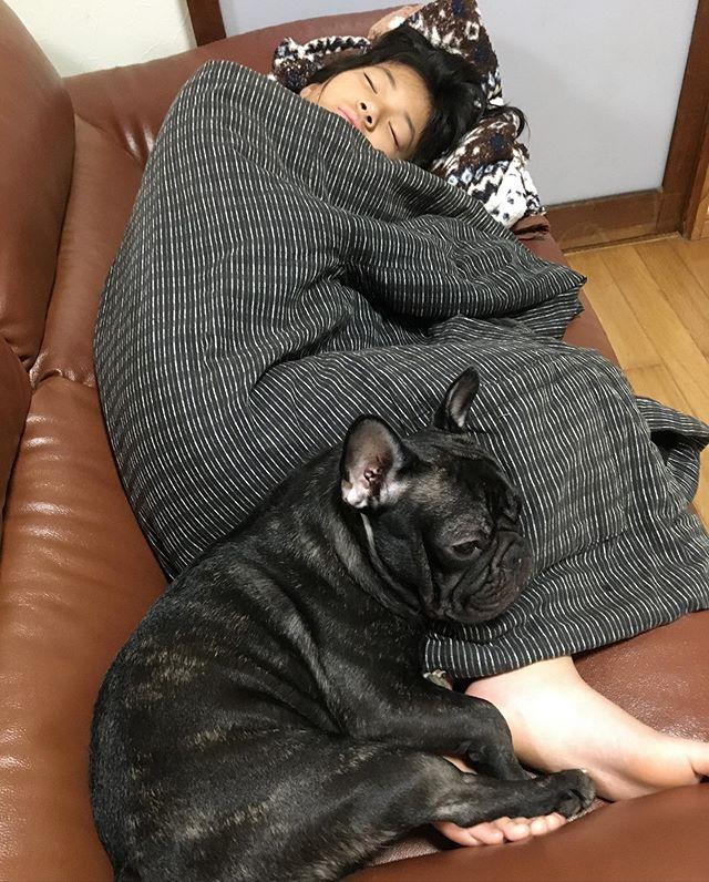 朝が弱い娘ちゃんパパから起こされ布団からは脱出️でも…パパのハンテンに包まれソファーで…😴😴😴一緒にリコも…😴😴😴 #朝が弱い#娘ちゃん#りこ#寒さはまだまだ今から